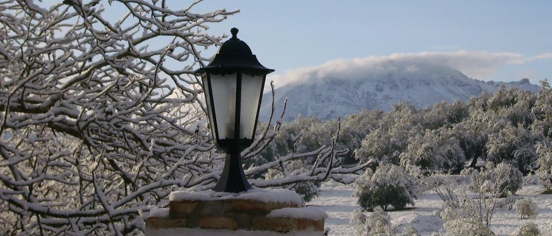Una manana soleada con nieve en priego